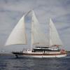 Luxury Motor Sailer (Gulet) 131 Feet