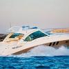 M/Y Sea Ray 515 Hard Top