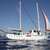 Traditional Motor Sailer 79 Feet